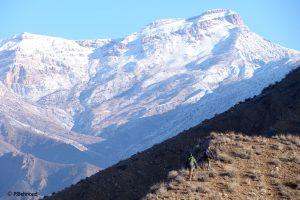 Mountain Sarigol