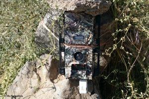 Panthera Camera Trap