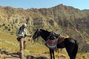 Tandoureh Horse