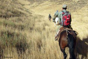 Equitation Sarigol