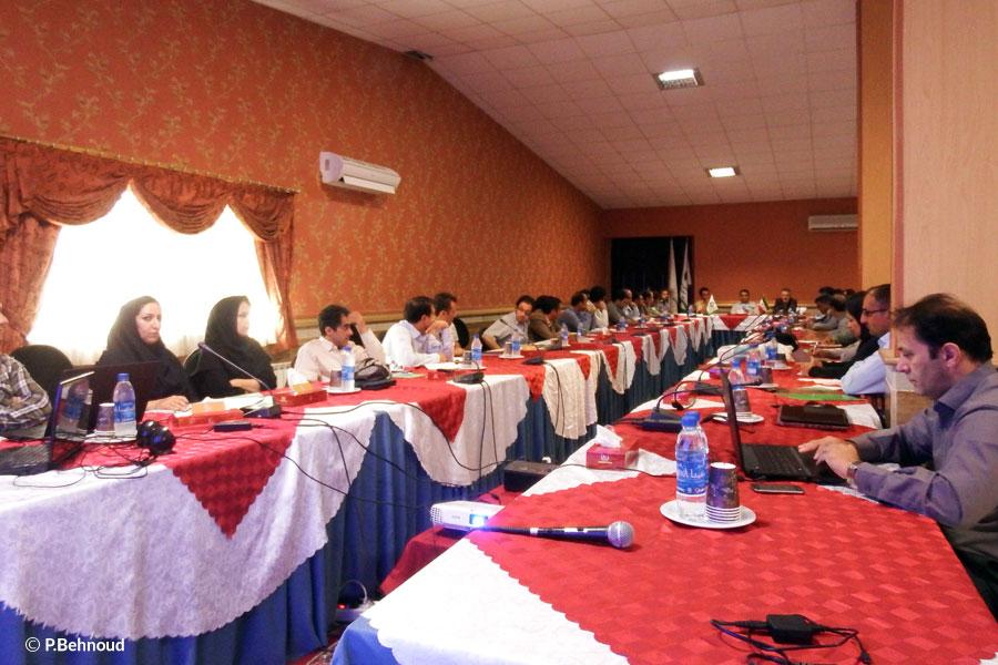 workshop Members