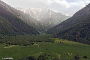 Sehezar Forest